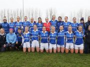 Laois team pictured ahead of the league opener against Kildare