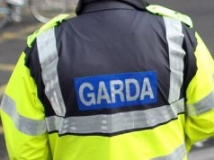 Gardaí are appealing for witnesses after all the damage to cars