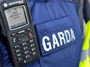 Gardai appealing for witnesses after a car was burnt out in Portlaoise