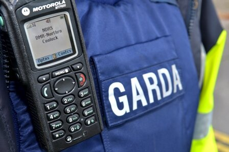 Gardai appealing for witnesses to the act of vandalism to contact them