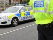 Gardaí are appealing for witnesses to a hit and run