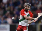 Eoin Fleming has got the nod to start in goal this Sunday for Laois against Wexford