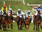 Noel Fehily celebrates after winning the Betway Queen Mother Champion Chase on Special Tiara during the Cheltenham Racing Festival