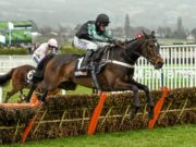 Altior on his way to winning the Supreme Novices Hurdlre in Cheltenham in 2016