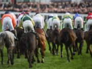 There are seven more races on the card for day two of Cheltenham