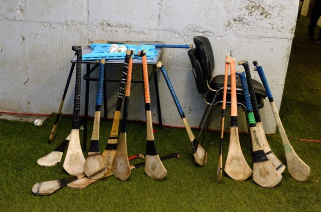 The Laois minor hurling panel has been named