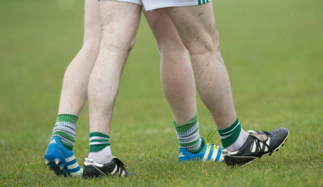 The future of the Laois GAA football leagues is to be examined by an external group