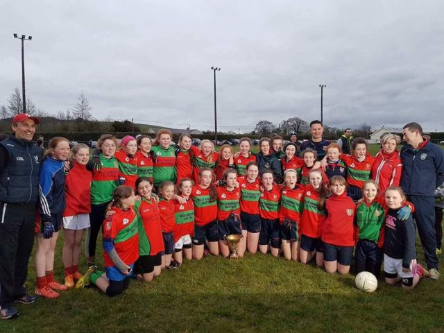The Timahoe Ladies team who were crowned Feile champions last night