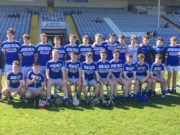 The Laois minor hurling team to take on Meath in O'Moore Park has been named