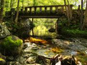 No money to fix the bridge in Camross or Mayo