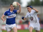 Review of the year for the Laois senior footballers