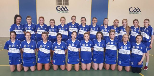 The Laois camogie team who took on Meath in the All-Ireland Intermediate championship today