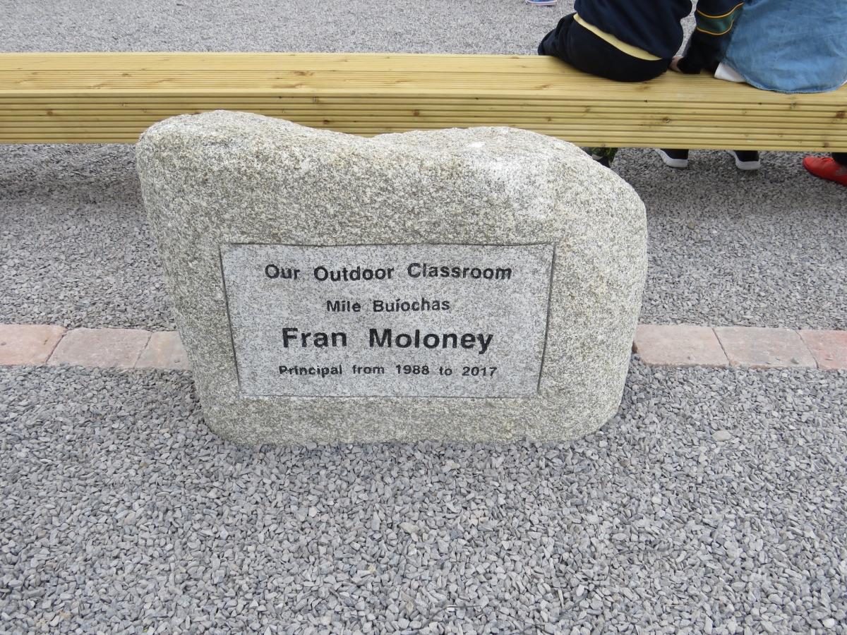 In Pictures: Ballylinan primary school principal retires