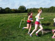 Laois Primary School Cross Country Championships