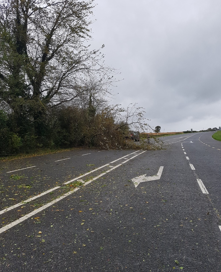 19 roads blocked, 24 fallen trees and a car crash in
