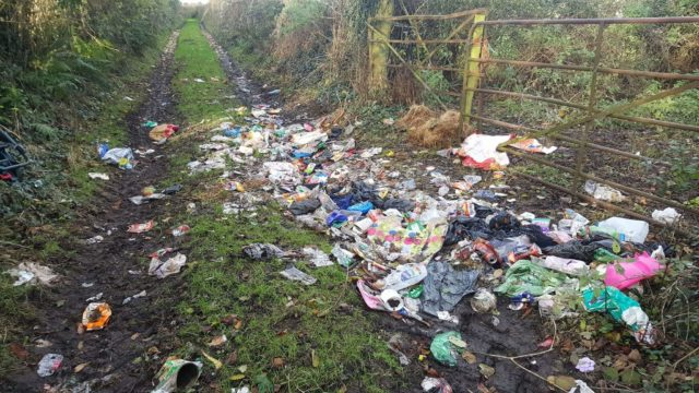 Disgusting images of dumping in rural Laois