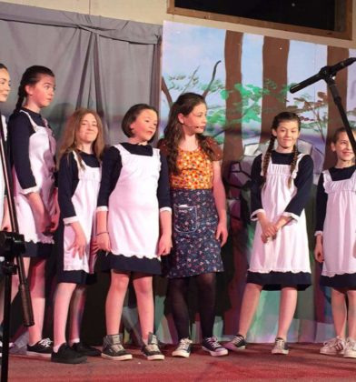 Members of the Wolfhill Panto on stage