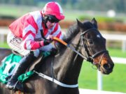 Totall Recall will be for Aintree Grand National glory