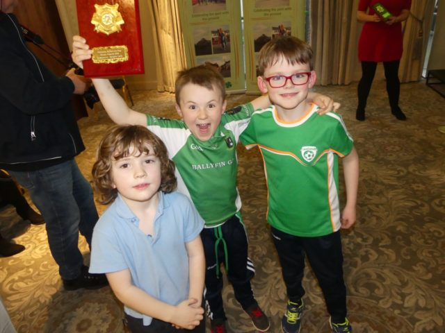 Portlaoise St Patrick's Day Awards night