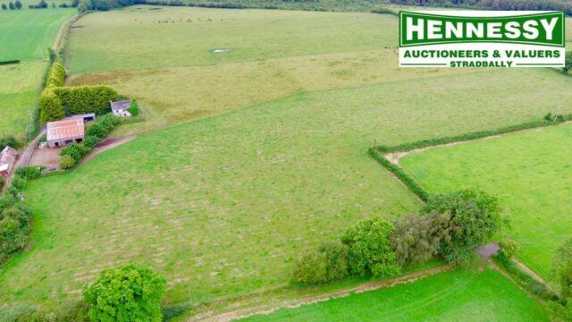 Hennessy Auctioneers Ballyroan