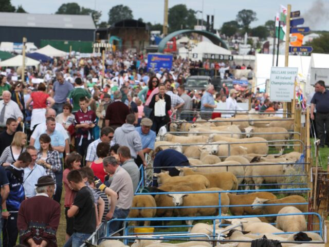 Tullamore Show cancelled