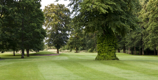 Portarlington Golf Club