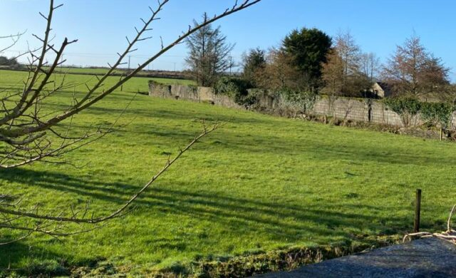 Site for proposed Borris-In-Ossory playground