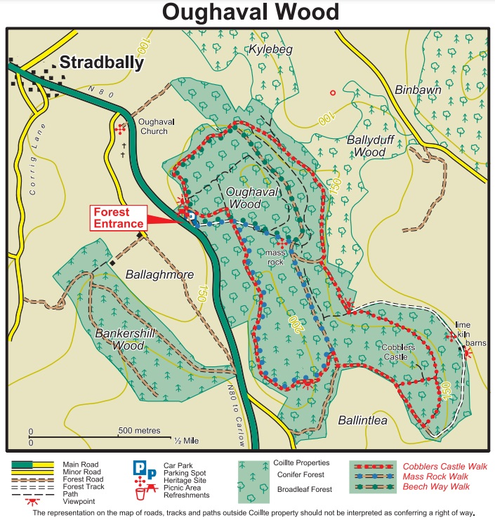 Oaghaval Woods Stradbally