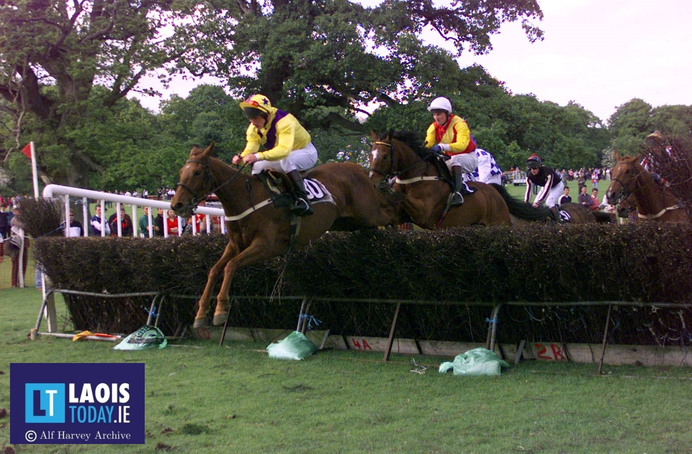 Laois Hunt Point to Point